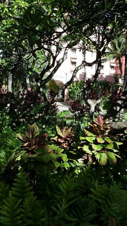 The Royal Hawaiian, a Luxury Collection Resort: Garden entry to hotel