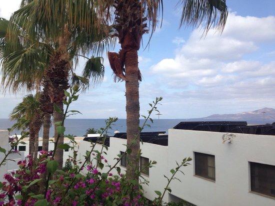 Apartments Parque Tropical: Vistas desde la terraza