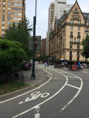 Central Park Horses: where john lennon was shot-yoko ono still lives there