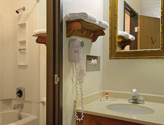 Super 8 Blue Earth: Bathroom