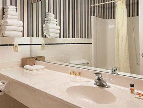 Super 8 Baldwin : Bathroom