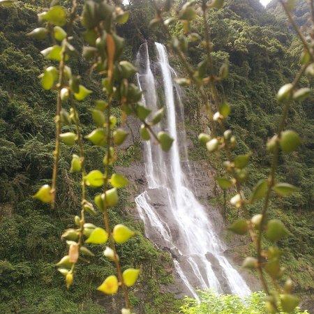 Wulai Falls: 烏來瀑布