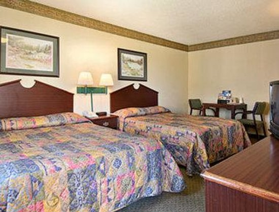 Super 8 Indianapolis/NE/Castleton Area: Standard Two Double Bed Room
