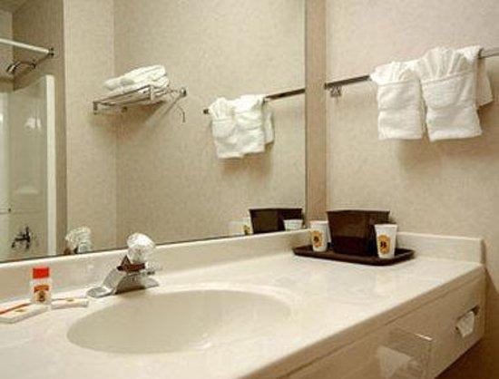 Super 8 Bonne Terre : Bathroom