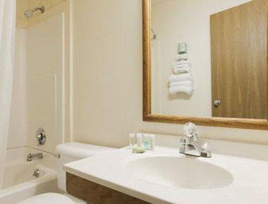 Super 8 Flint Miller Rd/Airport: Bathroom