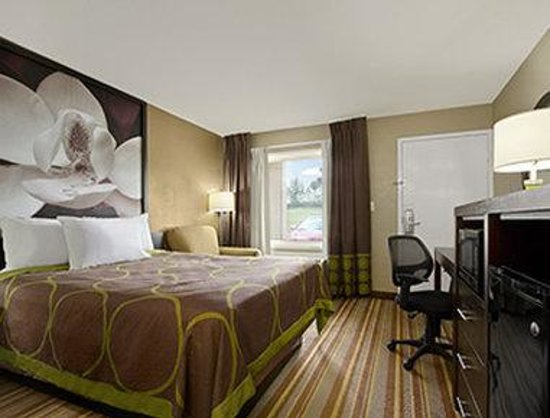 Super 8 Tupelo Airport : One Bed Guest Room