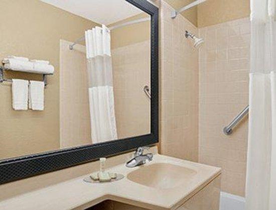 Super 8 Belleville St. Louis Area: Bathroom