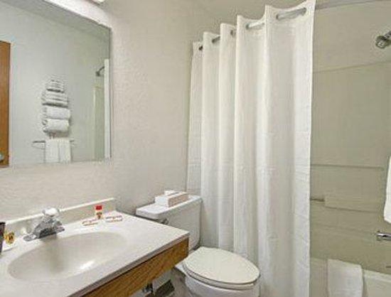 Super 8 Clawson/Troy/Detroit Area: Bathroom