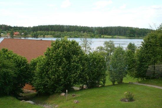 Jaunjelgava, Latvia: Wild Duck: view from the room