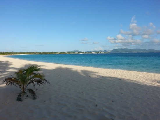 Rendezvous Bay Beach : Perfect