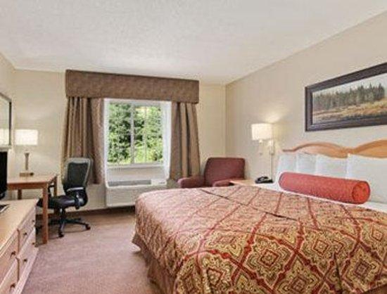 Savanna Inn & Suites : Standard One King Bed Room