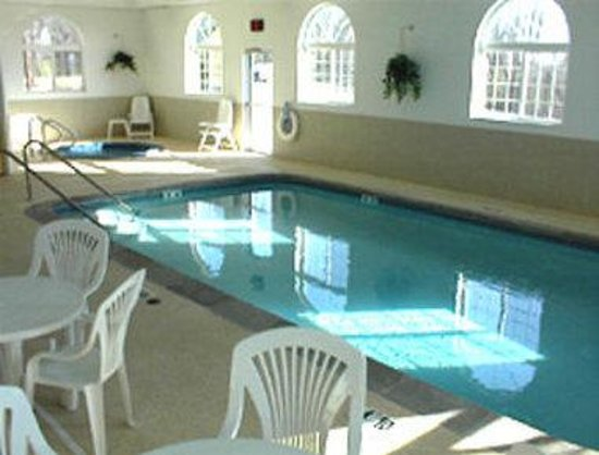 Savanna Inn & Suites: Indoor Pool