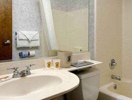 Super 8 Schenectady/Albany Area: Bathroom
