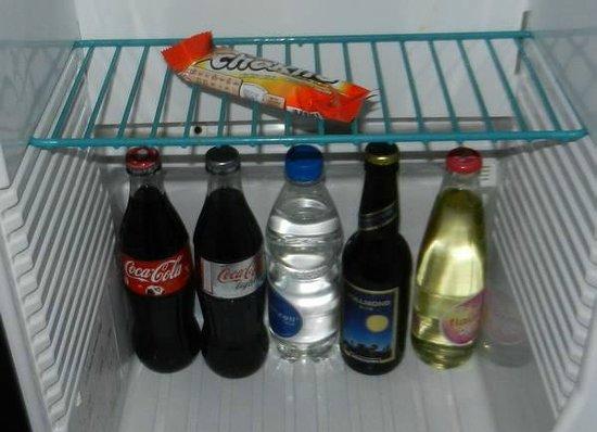 Hotel Seehof: Refrigerator