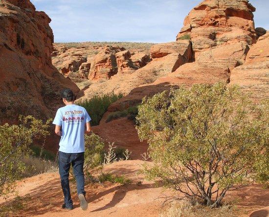 ATV and Jeep Adventure Tours: Walking Tour