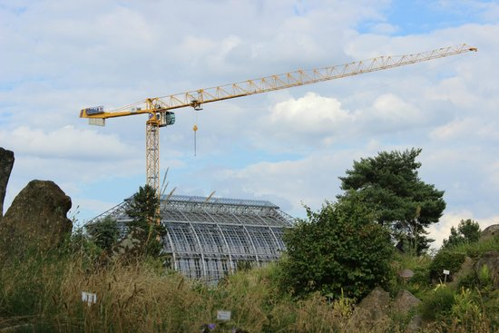 Botanischer Garten und Botanisches Museum Berlin-Dahlem: You can never escape Berlin's cranes though...