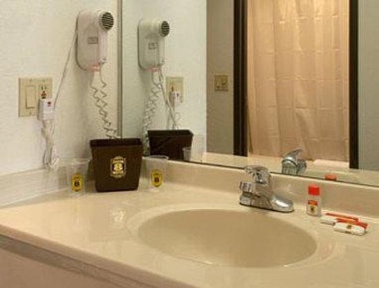 Super 8 Bourbonnais/Kankakee Area: Bathroom