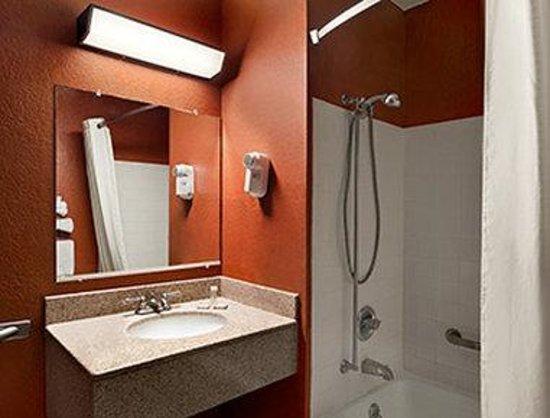 Super 8 Kalamazoo: ADA Bathroom