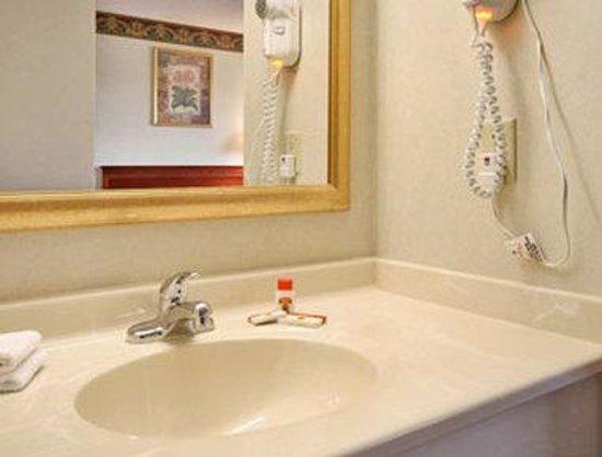 Super 8 Sawyer MI: Bathroom
