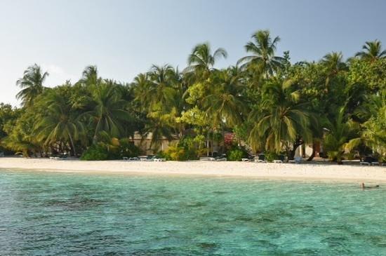 Vilamendhoo Island Resort & Spa: bord de plage
