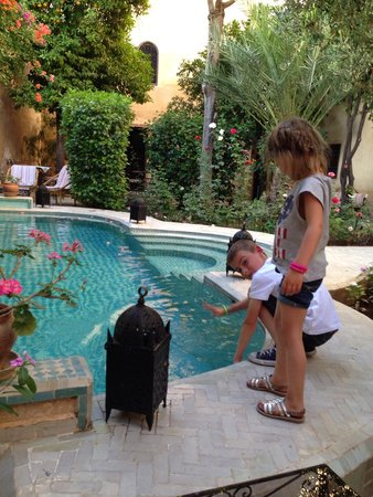 Riad Norma: La piscine et le jardin