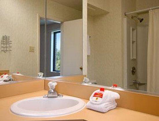 Days Inn Manassas/I-66: Bathroom