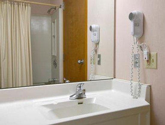 Super 8 Milan/Sandusky Area: Bathroom