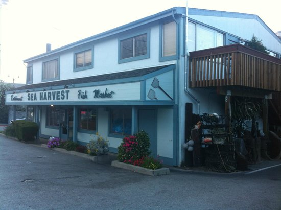 Sea Harvest Fish Market & Restaurant : Local