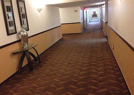 Ramada Davenport Orlando South: Hallway
