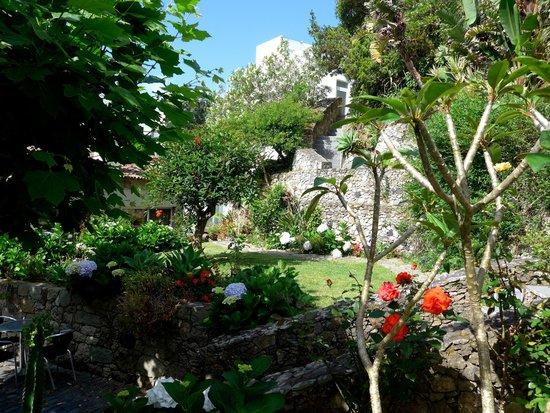 Quinta do Mar : Garden