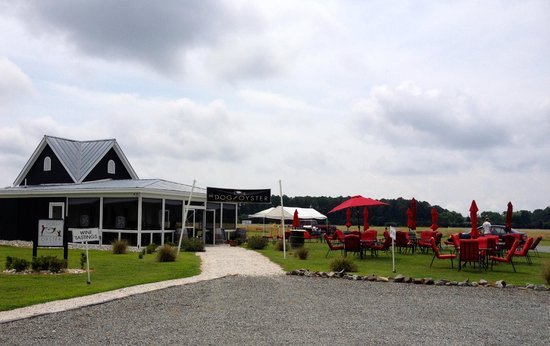 The Dog and Oyster Vineyard: The Dog and Oyster Tasting Area