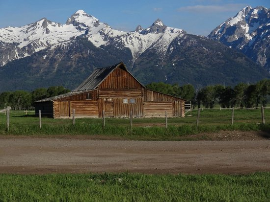 Moulton Ranch Cabins : The famous Mormon barn only 1min walk from the cabin