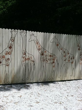 Naples Zoo at Caribbean Gardens: The wall leading to the giraffe enclosure