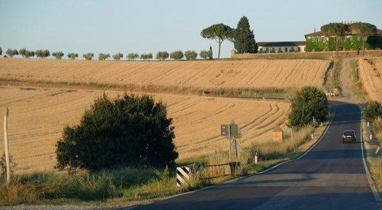 Agriturismo Il Belvedere: op een rijtje:  weg naar Belvedere