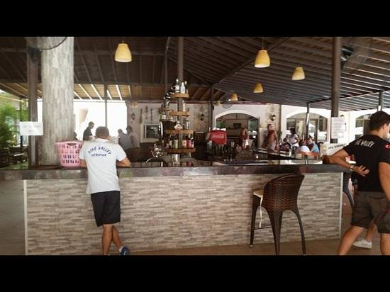 Hotel Pine Valley : pool bar