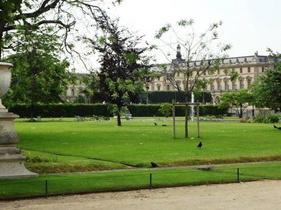 Jardin des tuileries foto di jardin des tuileries for Jardin jardin tuileries