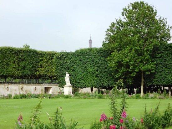 Jardin des tuileries foto di jardin des tuileries Jardin jardin tuileries