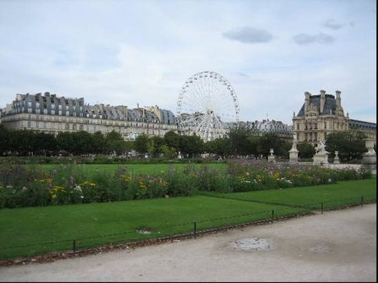 Jardin des tuileries picture of jardin des tuileries for Jardin jardin tuileries