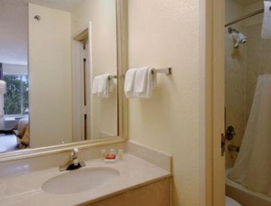 Ramada Orlando Near Convention Center: Bathroom