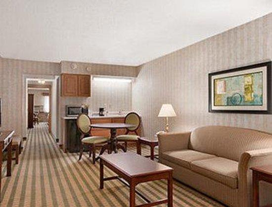 Ramada Saginaw Hotel & Suites : Suite - Livingroom