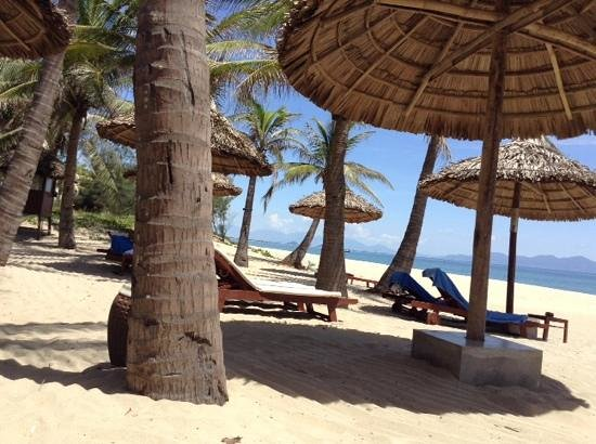 Palm Garden Beach Resort & Spa : beach