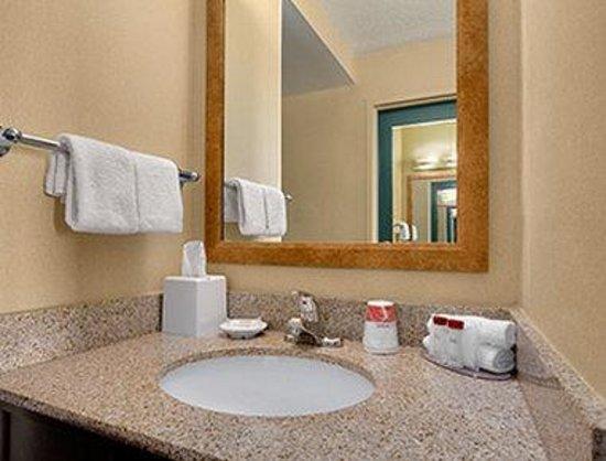 Ramada Virginia Beach Oceanfront: Bathroom