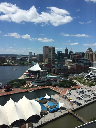 Baltimore Marriott Waterfront: Harbour view
