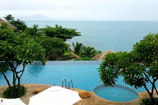 Vikasa Yoga Retreat: One of the swimming pools