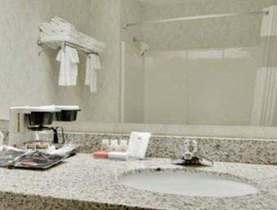 Ramada Limited Maggie Valley: Bathroom