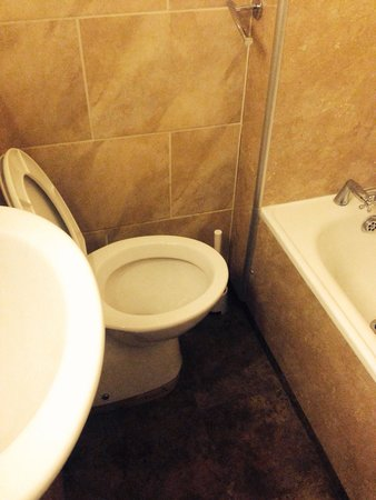The Croham Hotel : No room to use the toilet.