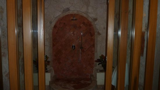 Grand Riviera Princess All Suites Resort & Spa : Room (Shower)