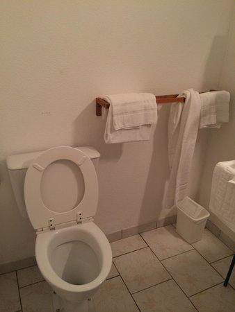 Hotel Le Vieux Fusil : Toilette