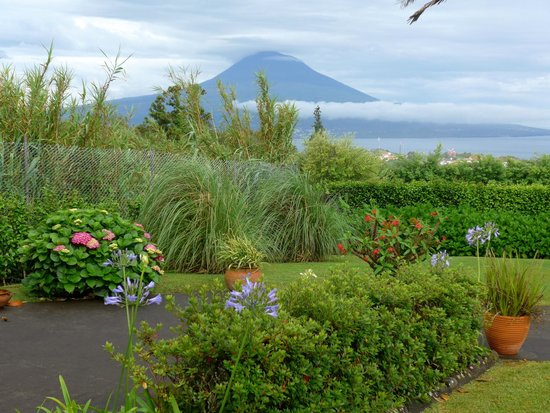 View of Mount Pico from Vila Belgica garden