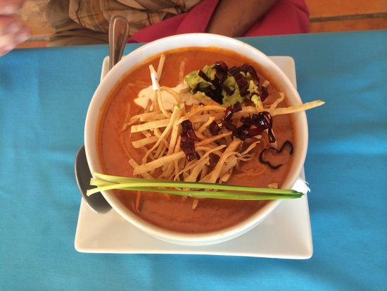 Parque de los Sueños Bar & Grill : Tortilla soup! A little spicy for me, but great flavor!